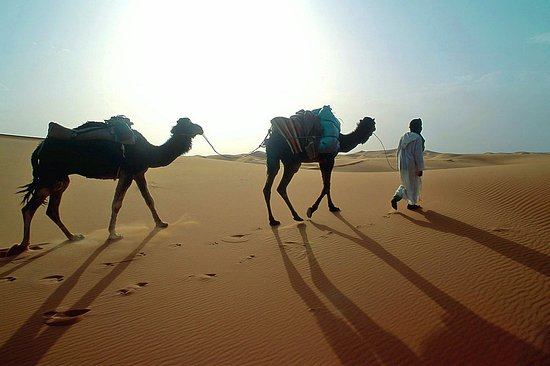 Travel Amar