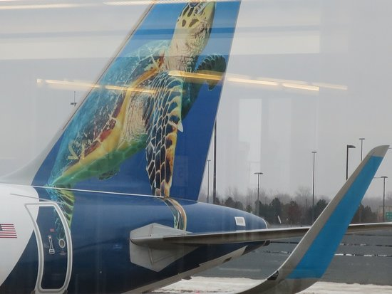 Valokuva: Frontier Airlines