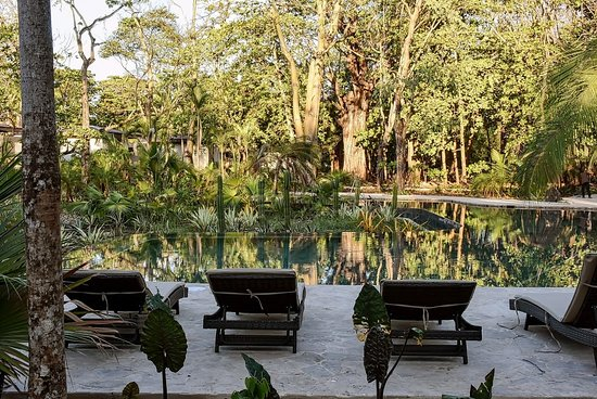 Hotel Nantipa - A Tico Beach Experience: Gardens & Pool