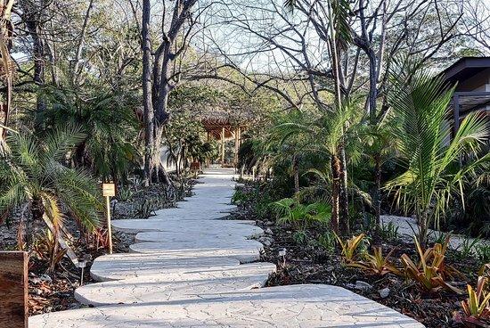 Hotel Nantipa - A Tico Beach Experience: Trail to lobby