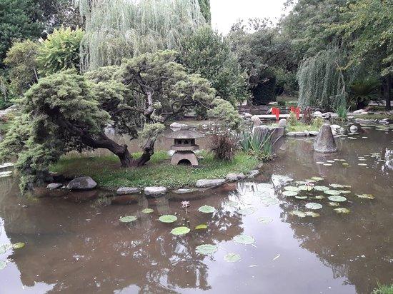 Agradable espacio natural para la paz interior
