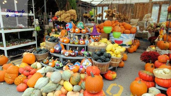 Atwater Market: Pumpkins