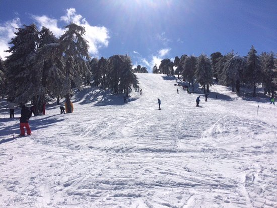 Troodos, Κύπρος: Sun Valley slope