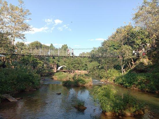 December Garden: Suspension Bridge where you can walk around. Nice for taking photo to the creek.