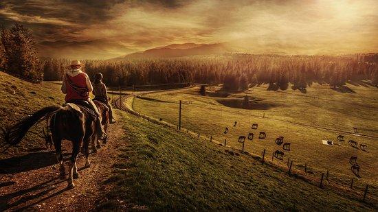 horseXperiences™ | GO EQUESTRIAN