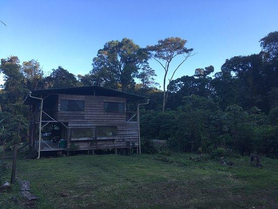 Un Lodge 4 * con un bosque 5*