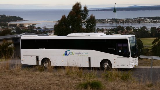 Pambula, Australië: Take a scenic drive around our beautiful region in a modern, air conditioned semi-coach, with an experienced local driver.