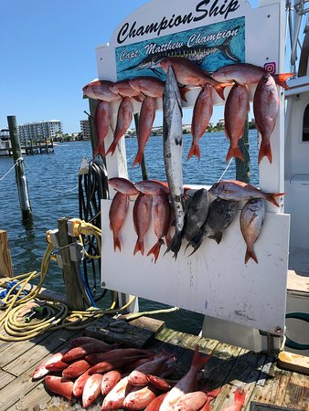 Championship Offshore Outfitting and Charters