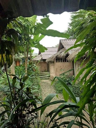 Hill Tribe Art Guesthouse: is a dream place for nature lovers, the location of our guest house is in Lahu & Akha original village.