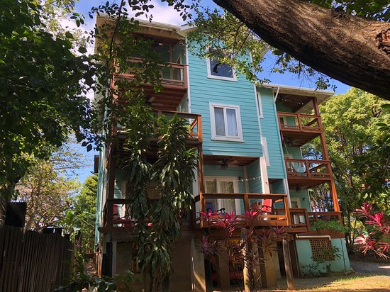 Casa Sierra / Casa Canuck - best location for a vacation rental in West End, Roatan.  Studios or 2 bedroom units available for short term rental