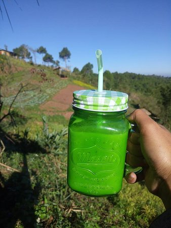"Fresh Avocado Juice available at"" Kalaw Farm House"""