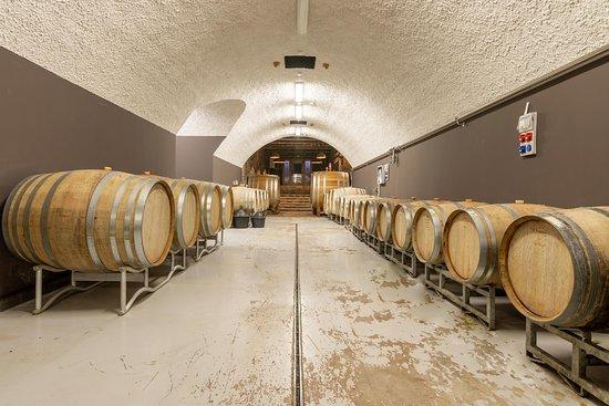 Nomad Tours Montenegro: Winery cellar Lipovac