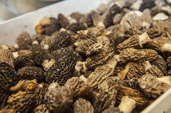 Fuentespalda, Spain: Colmenillas - producto de termporada