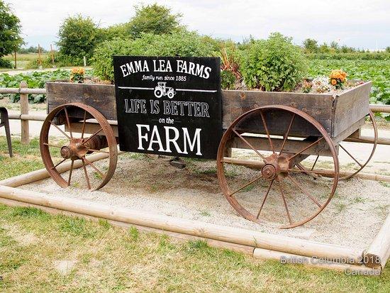 Emma Lea Farm last summer... http://mamakirana.blogspot.com/2018/10/summer-in-north-america-2018-part-12.html