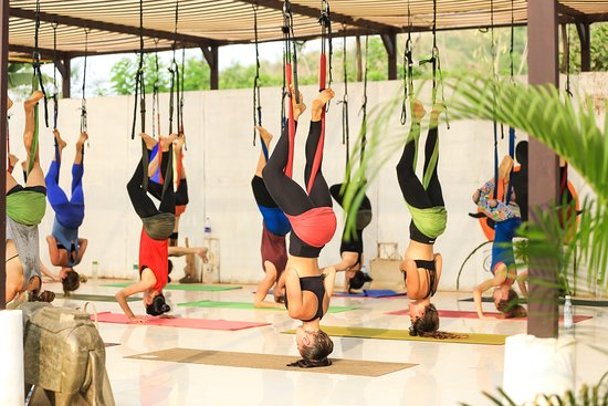 South Goa District, อินเดีย: Aerial Yoga at Kashish Yoga.....