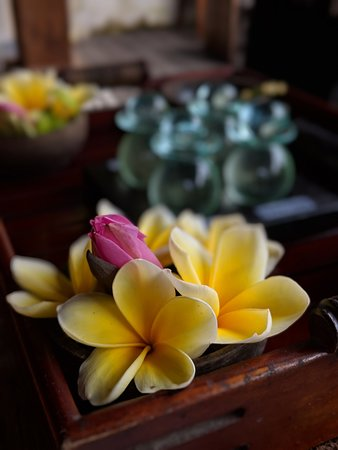 Flowers used in massage oils