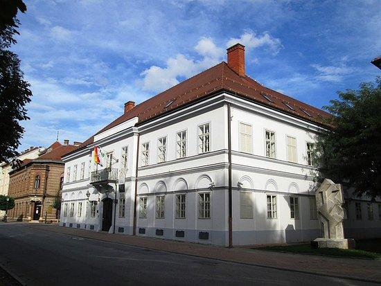 Bjelovar City Museum