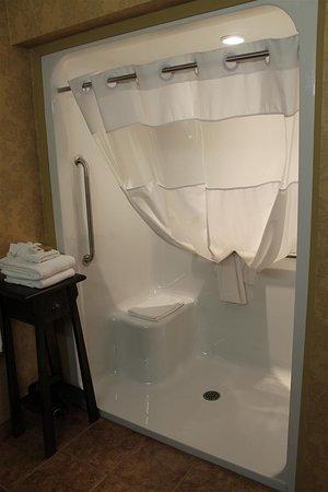 Best Western Plus Fredericton Hotel & Suites: Guest Bathroom