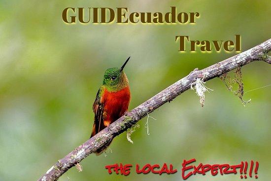 GUIDEcuador Travel