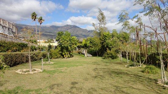 MoringaPark Tenerife