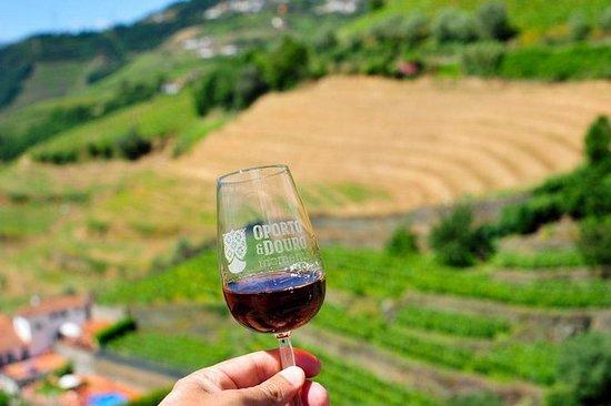 Privat Douro Valley Tour