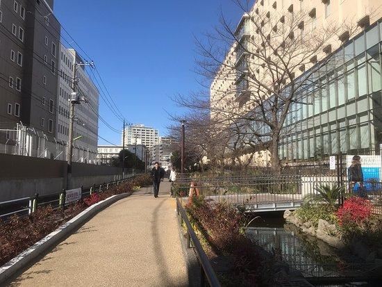 Meguro River Greenway