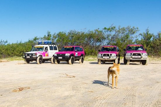 3 Day 4wd Tagalong Tour - Fraser...