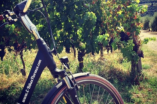 电动自行车佛罗伦萨托斯卡纳乘坐葡萄园参观