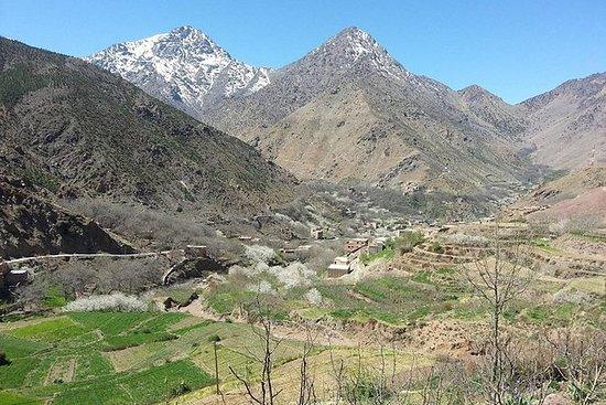 从马拉喀什到Ourika山谷和阿特拉斯山脉的全日私人旅游