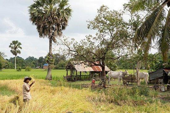Countryside Adventure - by Knai Bang...