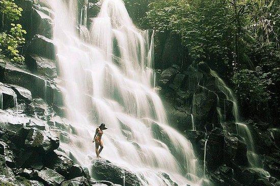 Cascadas de Bali en un día: Tukad...