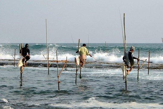 Sri Lanka Classic Tour 8 days - 7...