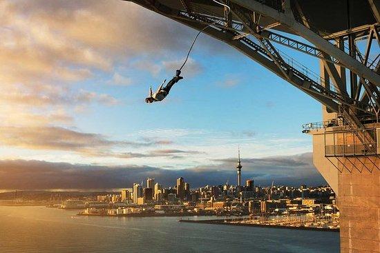 Auckland Adventure Day