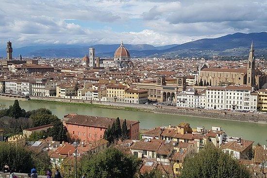 Privat transfer til Firenze, besøker...