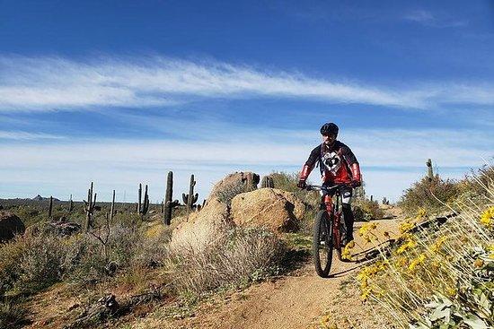 半日プライベートのSonoran砂漠マウンテンバイクツアー| Trailhe…