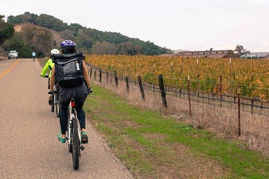 Tour in bicicletta del vino Santa