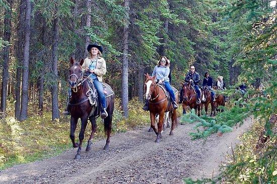 Paseos a caballo por 1 hora