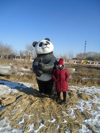 Jiamusi, China: панда