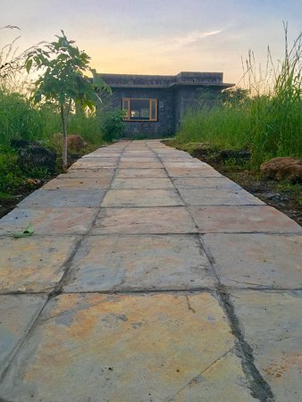 Pathway leading to Cottage