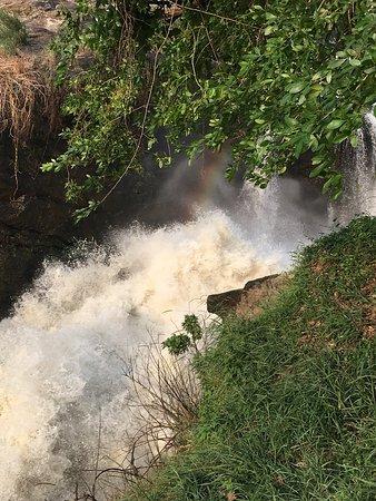 Trip to Murchison Falls January 2019