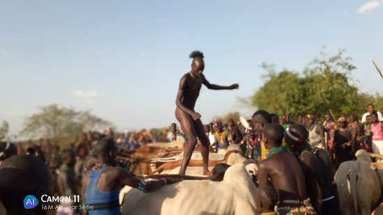 Turmi, Ethiopia: Wow cermoney  Hammer tribe  Bull juamping   📞0933902070