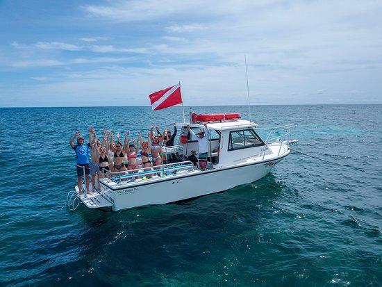 Paradise Island Charters
