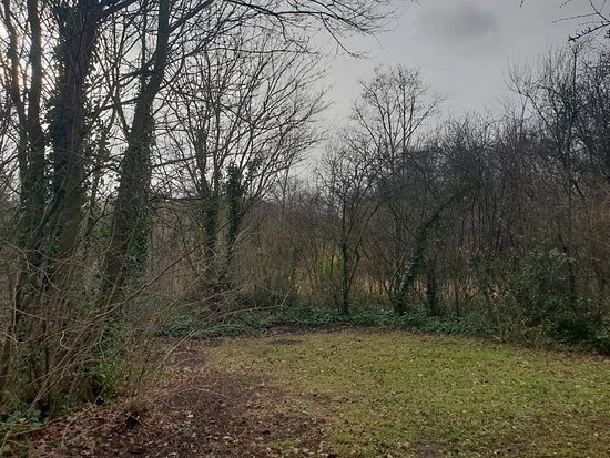 Stave Hill Ecological Park: the park