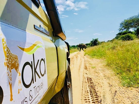 ‪Shaka Tours & Travel Uganda‬