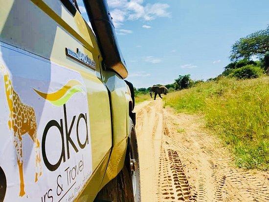 Shaka Tours & Travel Uganda
