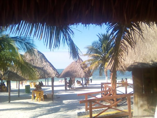 Campeche, Mexique : The beach with palapas and chairs you can rent
