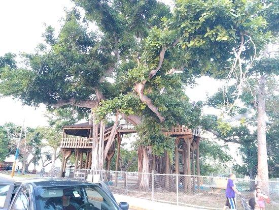 Colon Park