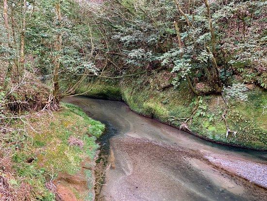 Odemizu Spring Water