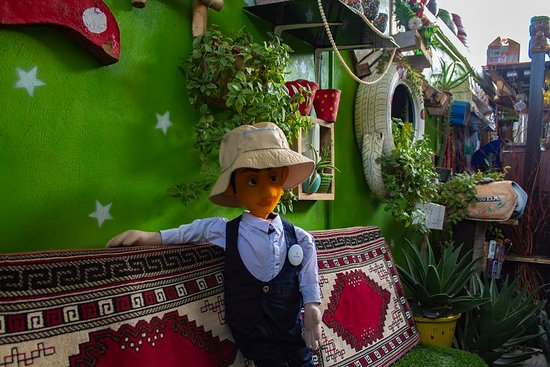 Shiraz green alley : Green alley is a peace of hand made heaven in shiraz where a creative couple used the recycle matterials to build this heaven , i suggest you to go there, take some photos and have cup of tea
