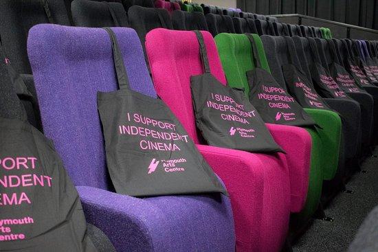 Plymouth Arts Cinema